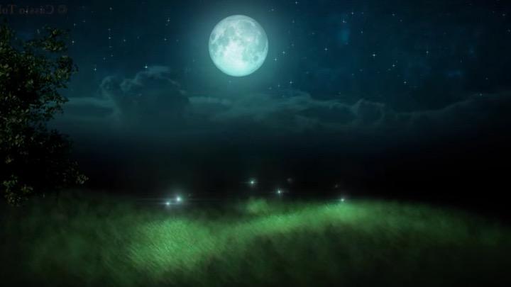 La sophrologie ou comment voir à nouveau les lucioles sous les étoiles  Diapos10