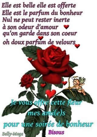 LES BONSOIRS DU SOIR  - Page 2 14572910