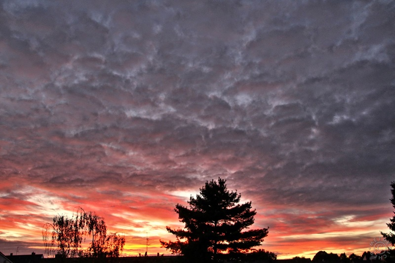Sonnenuntergang Sonnen10