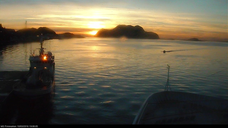 Pour vous les gens des régions tropicales Hurtig18