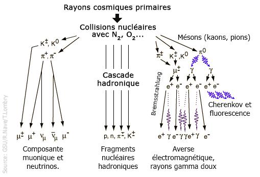 HUMMER H2 DU QUÉBÉCOIS - Page 3 Rayons10