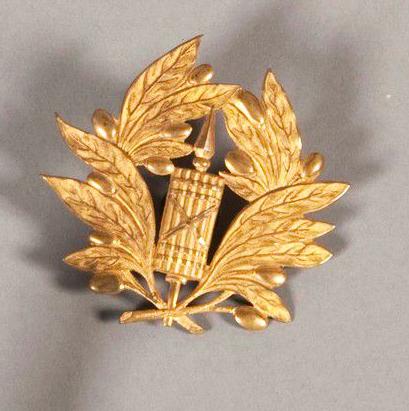 Képi brodé or, feuilles chêne et olivier (contrôleur des armées ? ...) Captur20