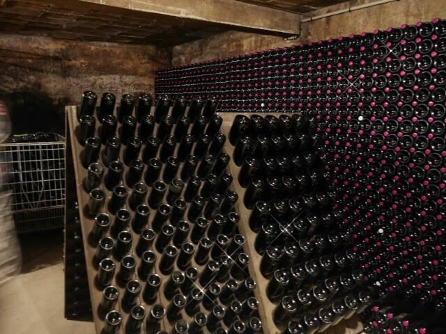Une nouvelle sortie en Champagne 14370010