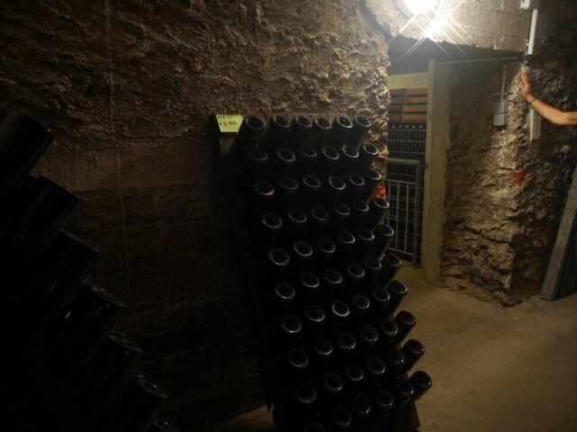 Une nouvelle sortie en Champagne 14440810