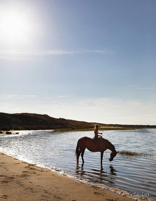 À cheval Acheva12