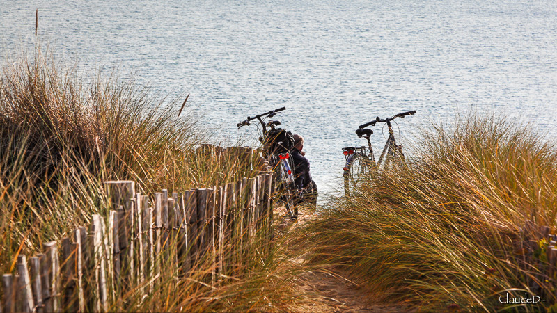 À bicyclette Velstp10