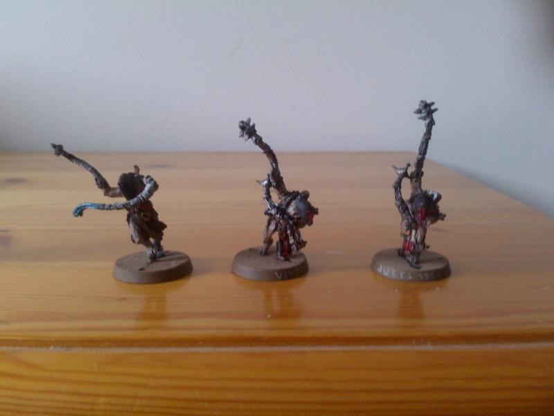 Les troupes de Karl Dsc_0911