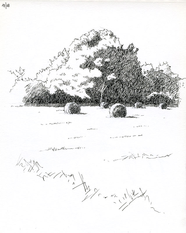 Croquis de Zongo - Page 13 Vac1210