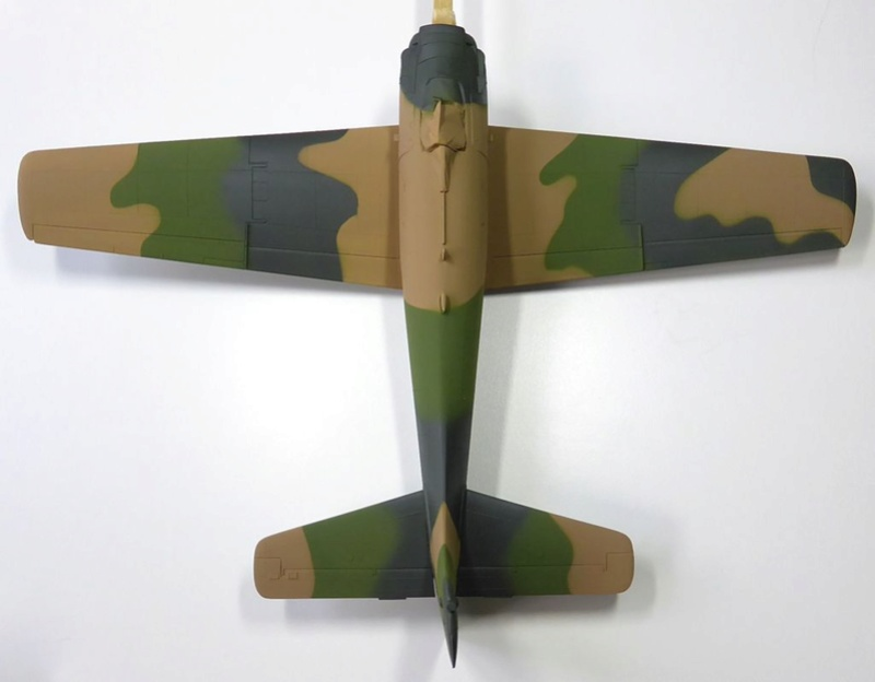 [TAMIYA] Douglas A1 Skyraider: rénovation d'un souvenir - Page 3 Skyr3810