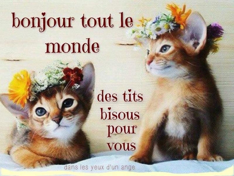 cairns d'Octobre 2016 - Page 8 Bonjou10