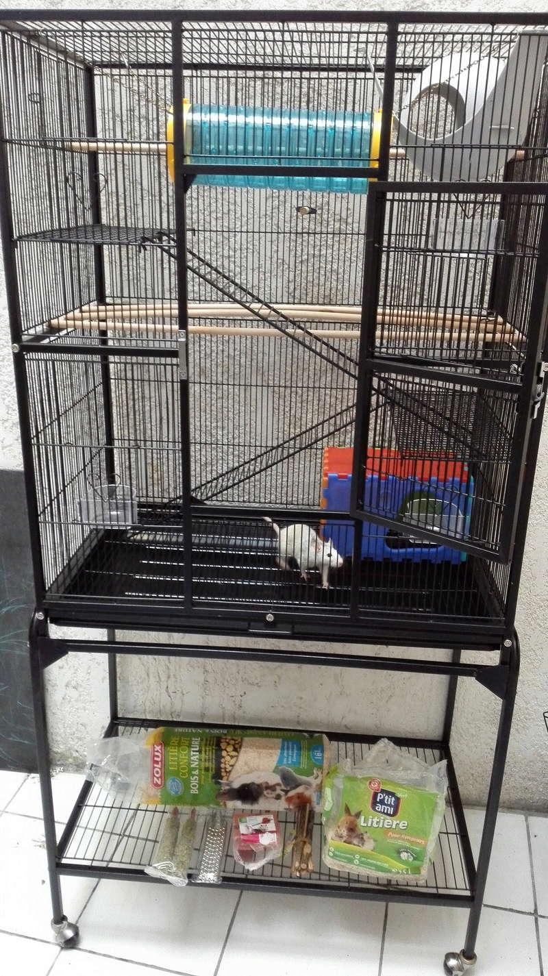 Cage Bubu XL + accessoires à Bordeaux [33] Img_2012