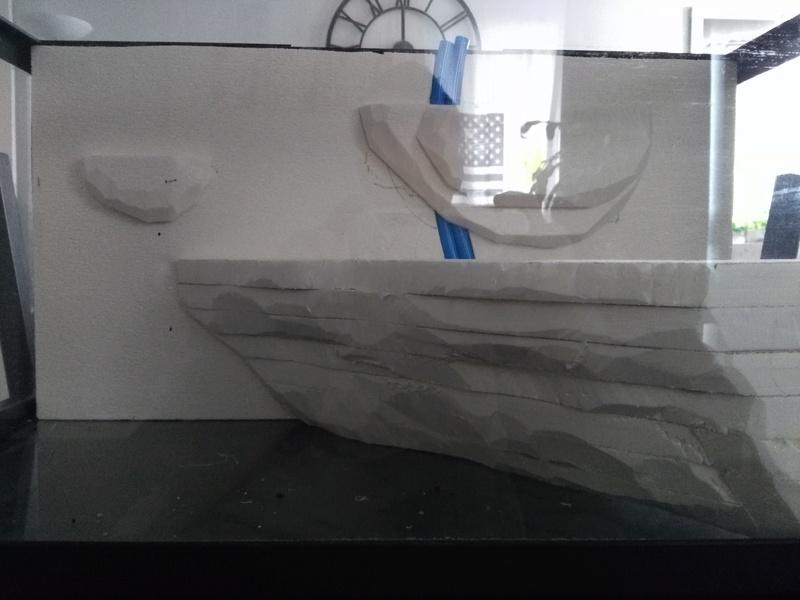 Projet deux paludariums 60L Img_2027