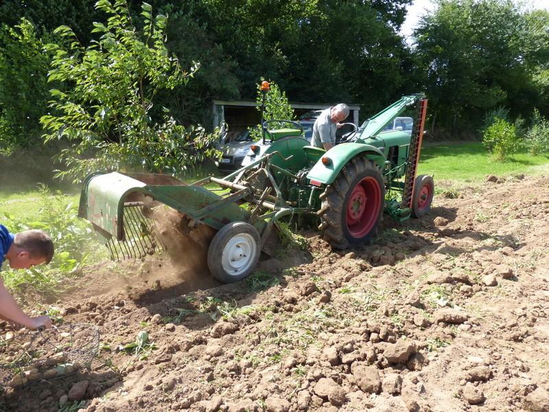 Récolte pommes de terre 2016 P1000083