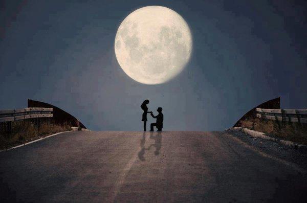 Au clair de Lune - Page 2 31162910