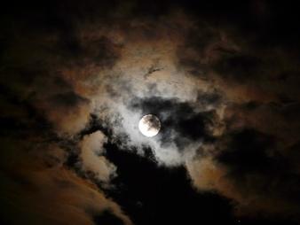 Au clair de Lune - Page 2 L-39-o10