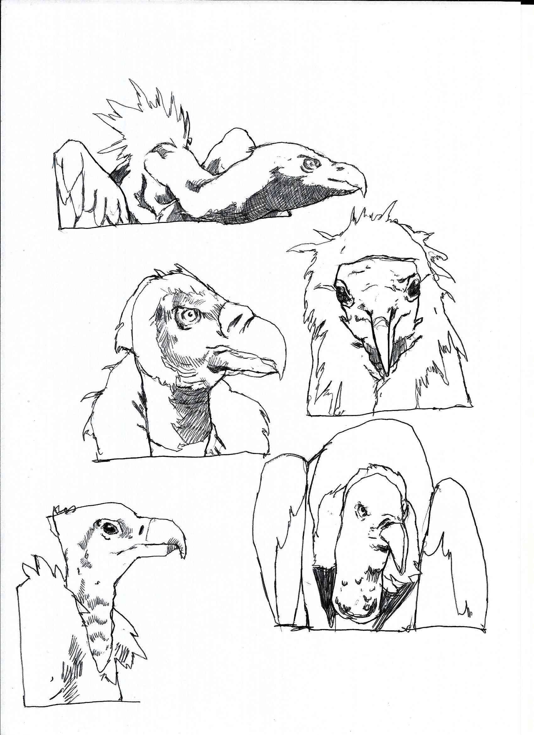 Etudes de Mihail - Page 2 Scan_314