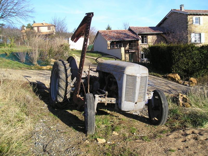 """FERGUSON TE 20 """"petit gris""""  1/24e P1150911"""