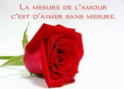 Une rose à offrir n°2 - Page 2 13267710