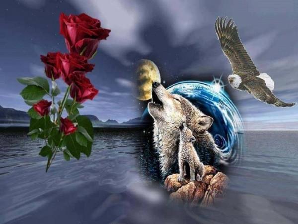 Une rose à offrir n°2 - Page 2 Ef227b10