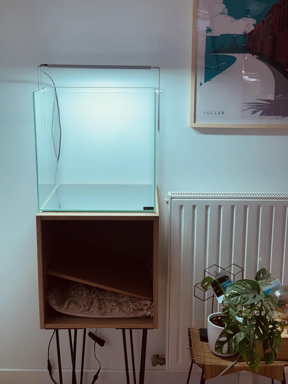 Nouveau projet : 54L Cube aquascaping Bd861f10