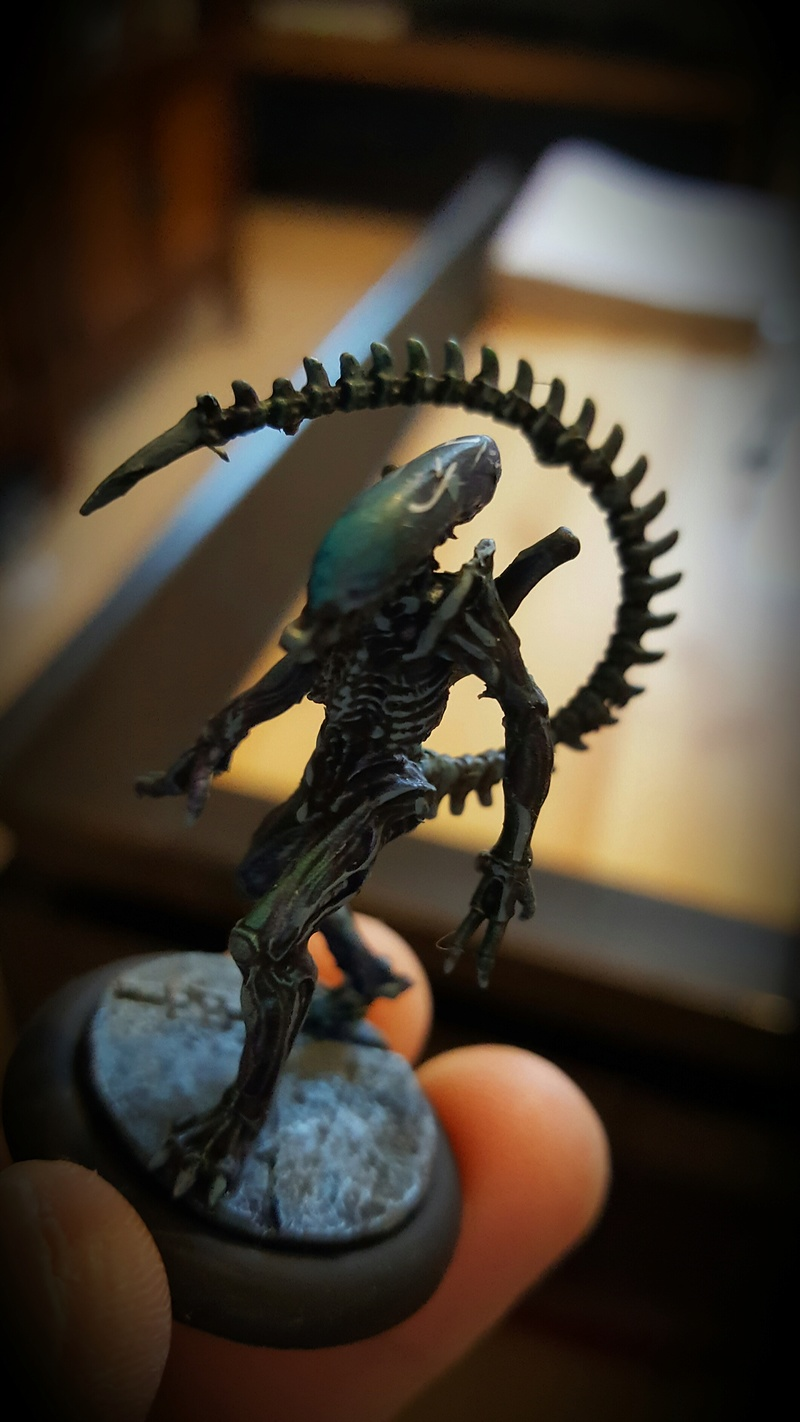Vendredi 4 novembre Aliens vs Predators 20161016