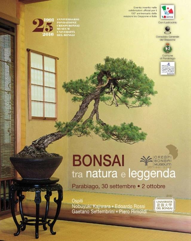 Bonsai tra natura e leggenda 1813_i10