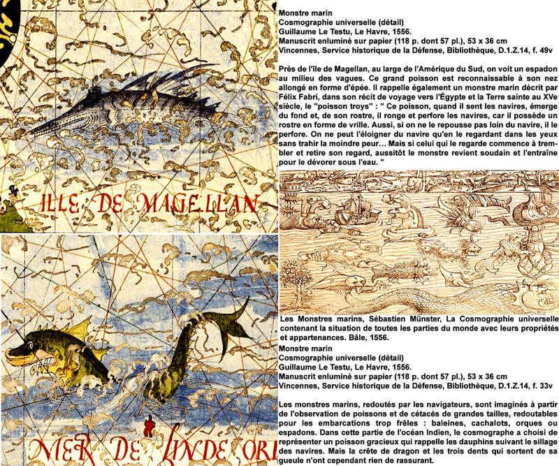 HISTOIRE DE CARTES MYTHIQUES P_mons10