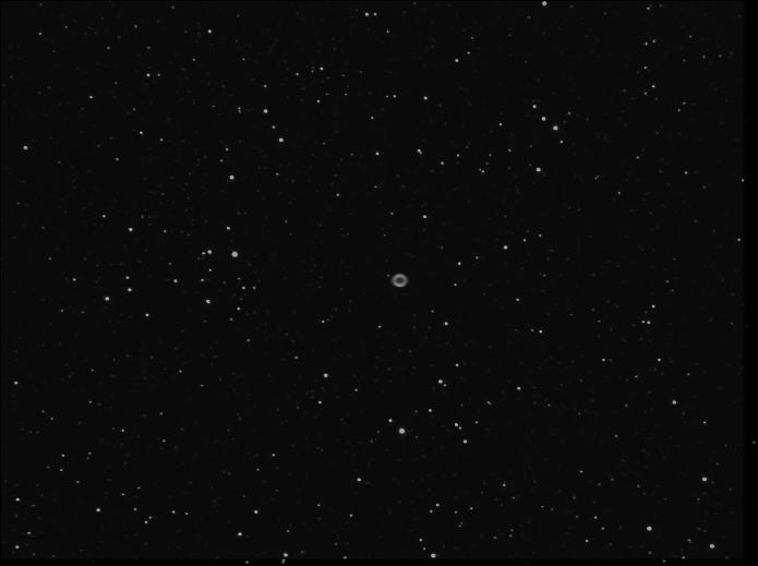 petite derniere  M5710