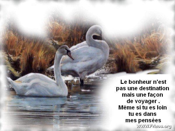 citation du jour/celebres et images de colette Le_bon10