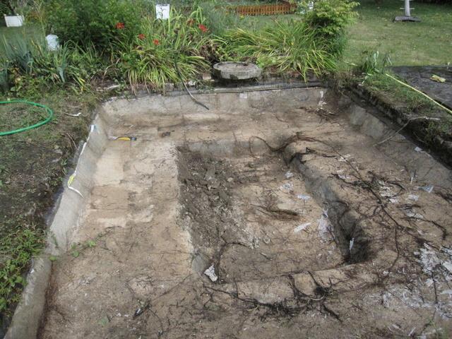 Rénovation/construction d'un bassin Img_1310