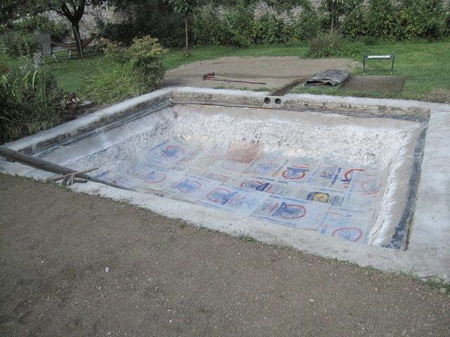 Rénovation/construction d'un bassin Img_1517