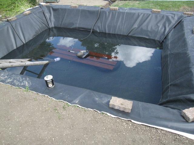 Rénovation/construction d'un bassin Img_1523
