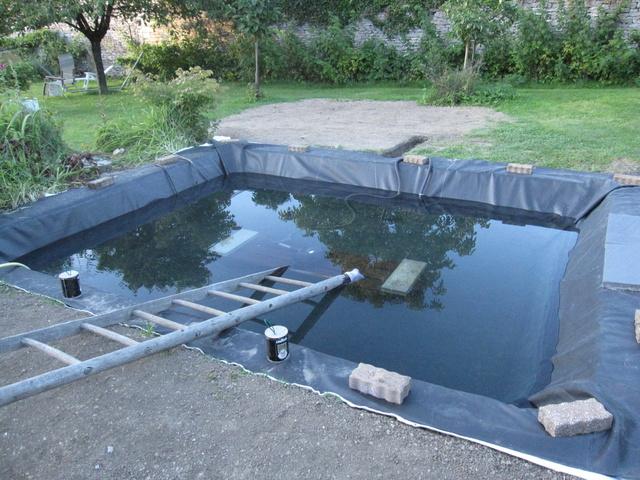 Rénovation/construction d'un bassin Img_1524