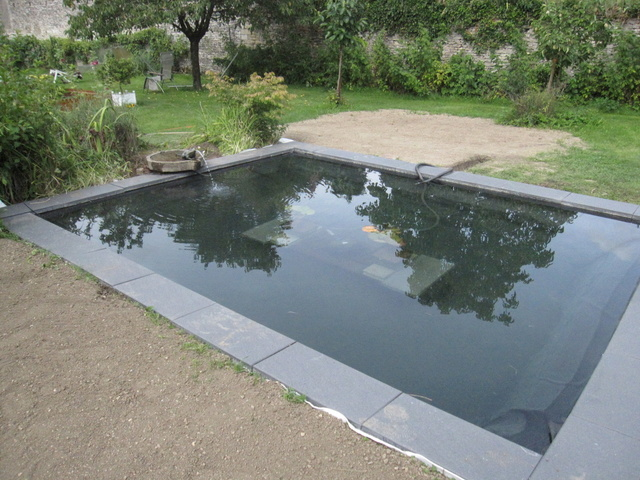 Rénovation/construction d'un bassin Img_1525