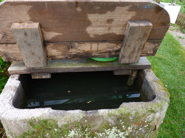 Rénovation/construction d'un bassin P1040715