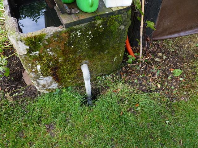 Rénovation/construction d'un bassin P1040716