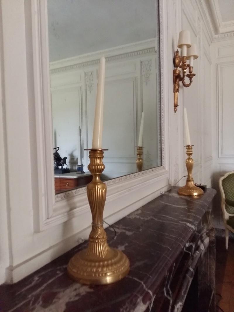 Expo au Grand Trianon : De Louis XIV à Charles de Gaulle  - Page 3 20160129