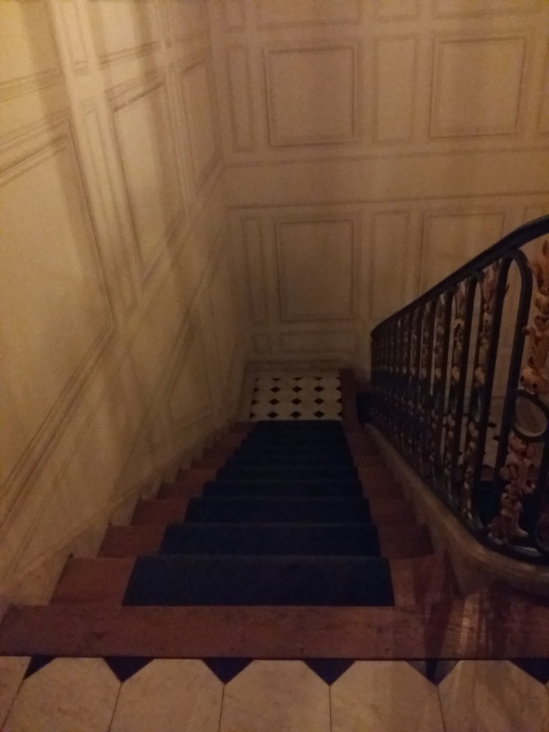 Expo au Grand Trianon : De Louis XIV à Charles de Gaulle  - Page 3 20160153