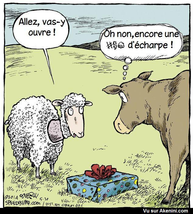 HUMOUR - Page 3 22110