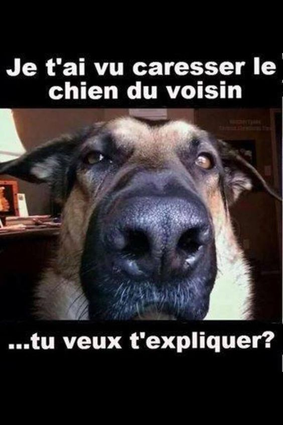 HUMOUR - Page 5 23468410