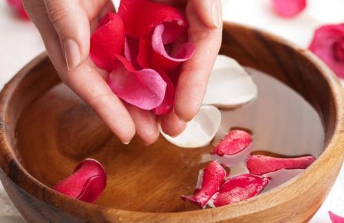 Vertus des roses Roses-10