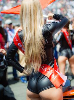 Remember Le Mans 2015 Lemans12