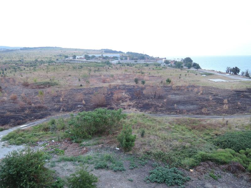 Пожары в Геленджике Dscn3212