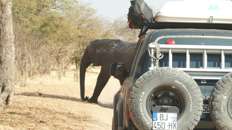 Namibie Août 2016 P1100111