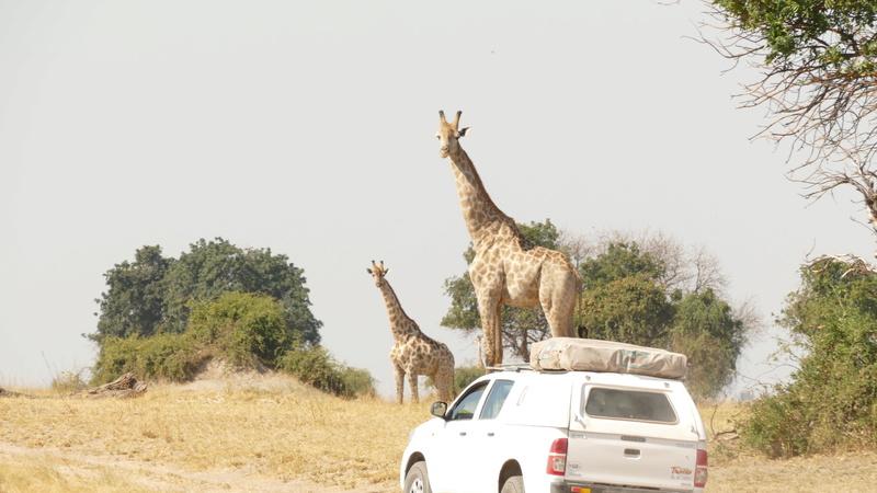 Namibie Août 2016 P1100311