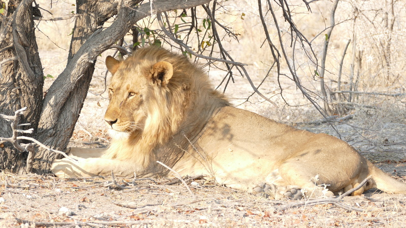 Namibie Août 2016 P1110120