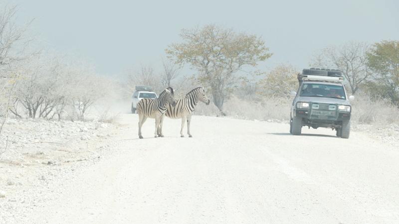 Namibie Août 2016 P1110213