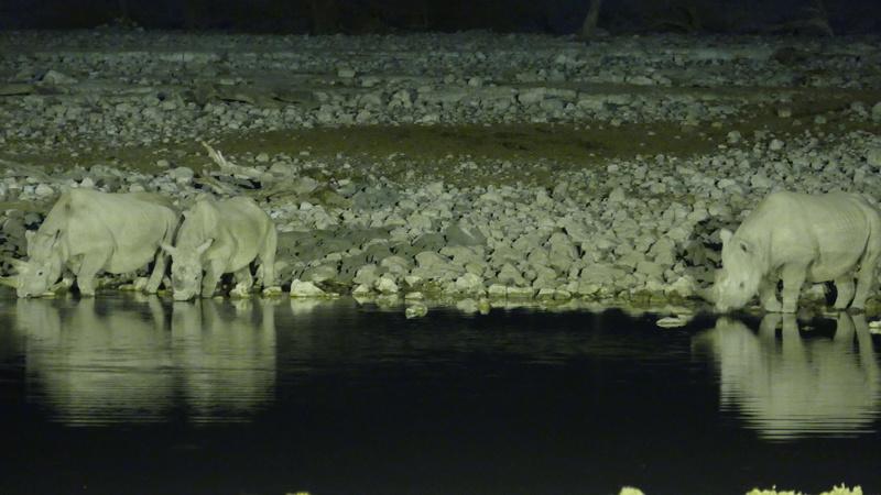 Namibie Août 2016 P1110321