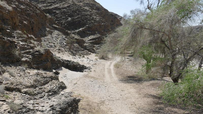 Namibie Août 2016 P1110716