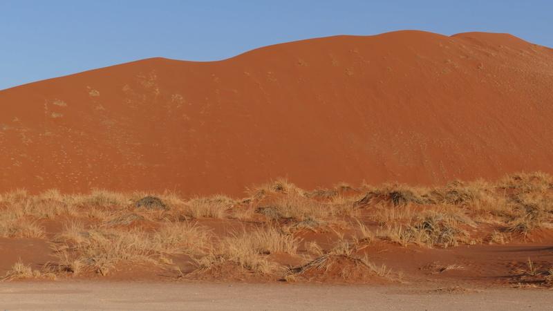 Namibie Août 2016 P1110916